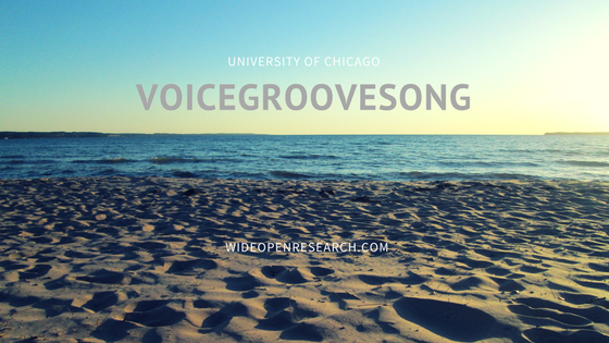 voicegroovesong